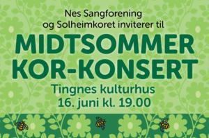 Sommerkonsert Tingnes 16. juni 2019