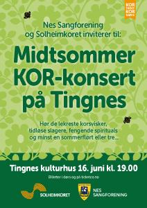 Sommerkonsert på Tingnes 2019 plakat